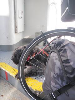 cykel, färja, hund
