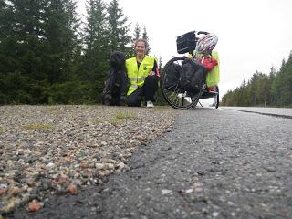 cykla med hund, Lina Hallebratt, Lovaktarens Vega