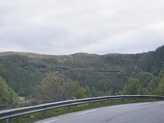 längs vägen