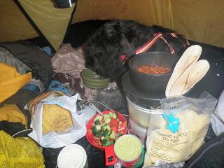 tacomys i tält, tältliv, fredagslyx