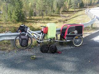 Bouvier des flandres cykeltur med hund